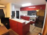 対面キッチン Panasonic リビングステーション Lクラス